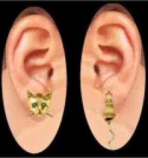 Cat & Mouse Thru the Ear Earring Stud & Jacket Set