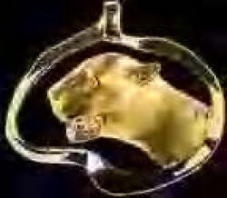 Gold 3D Wildcat Head Pendant