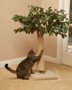 Scratching Cat Tree House