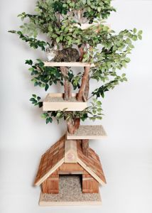 Mature Large Cat Tree House