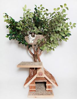 Sapling Small Cat Tree House
